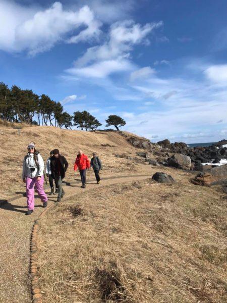 種差海岸を散歩
